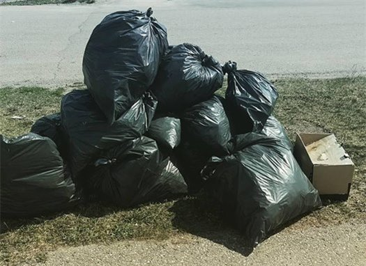Garbage Removed From Park During 2016 Pitch-In Week