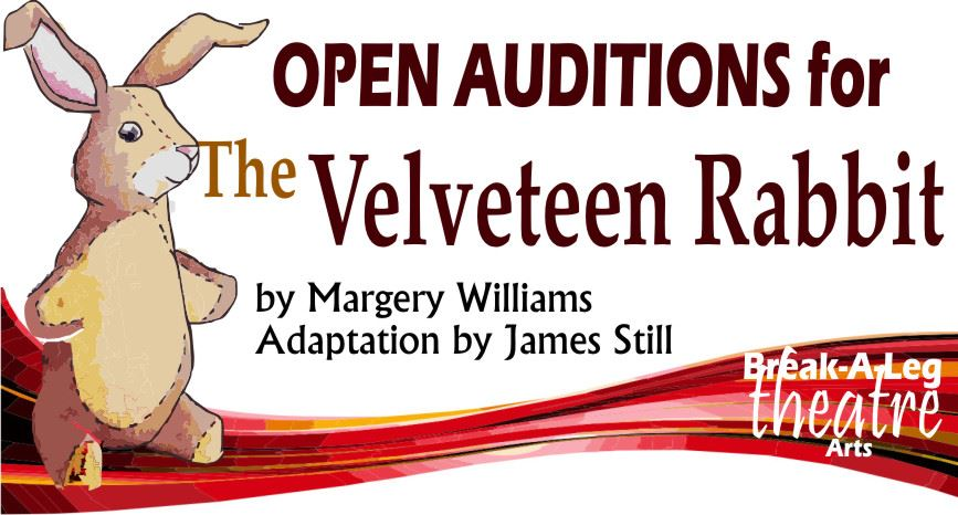 Auditions - Velveteen Mar 2019