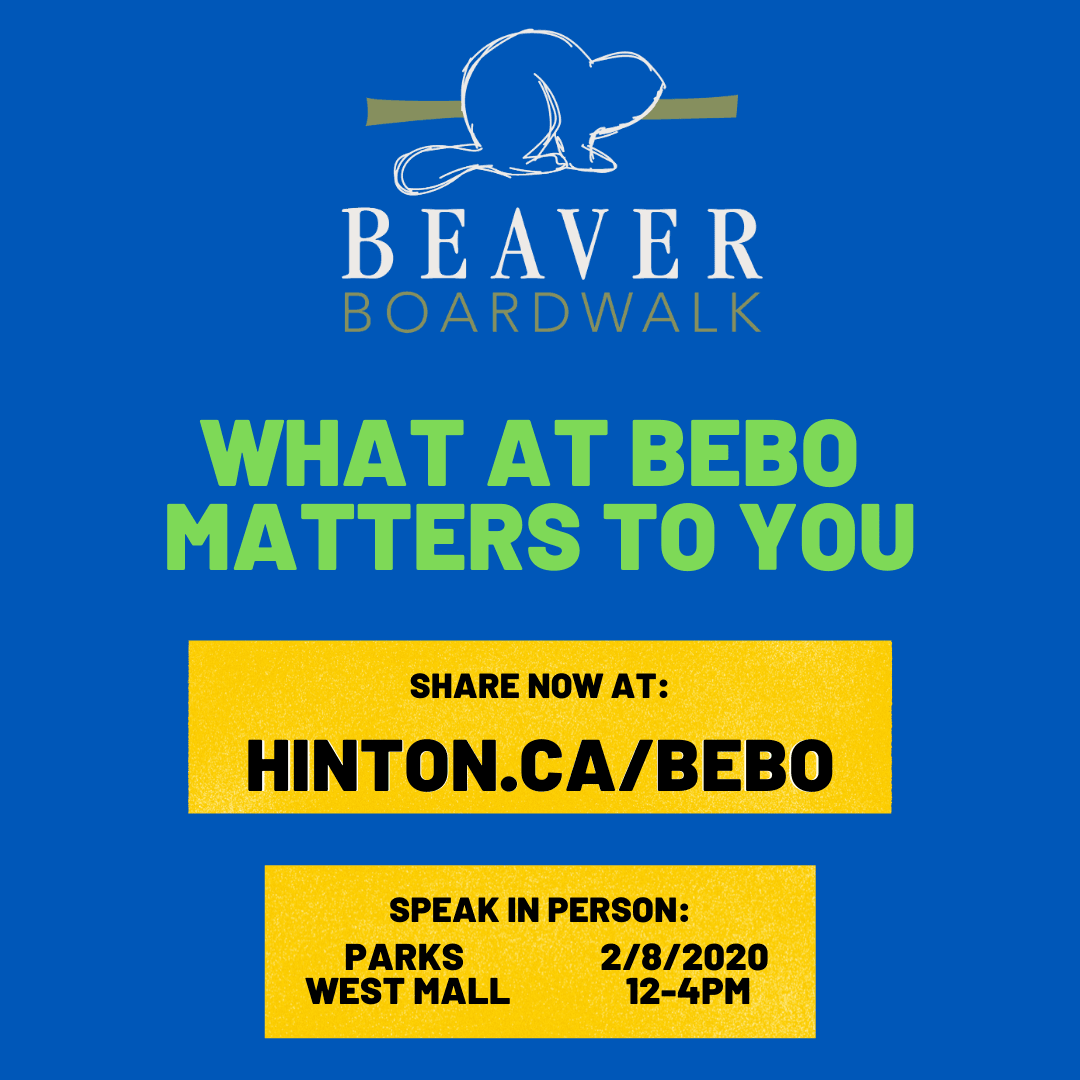 What at Bebo matters to you